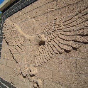 Saline Vets Eagle