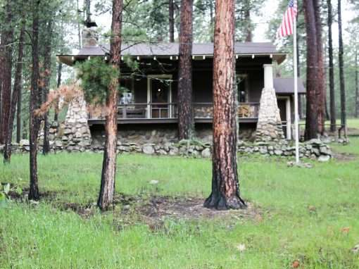 Custer State Park Archives